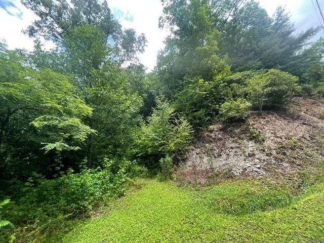 TBD Rice Lane, MARBLE, NC 28905 (MLS #138485) :: Old Town Brokers