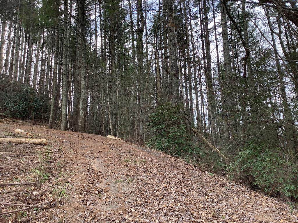 00 Woods Knoll - Photo 1