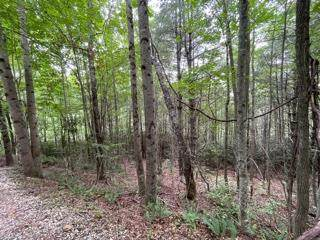 Lot 1 Summit View Drive, TOPTON, NC 28781 (MLS #138684) :: Old Town Brokers