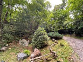 Lot 26 Summit View Drive, TOPTON, NC 28781 (MLS #138687) :: Old Town Brokers