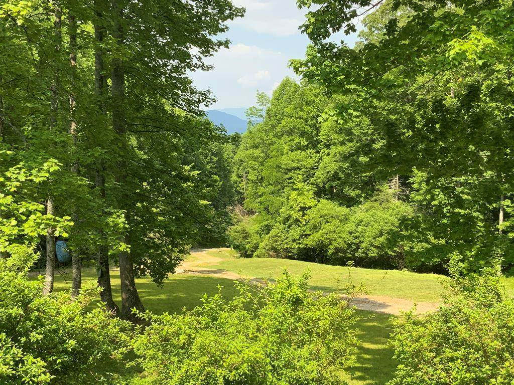 1488 Marr Creek Road - Photo 1