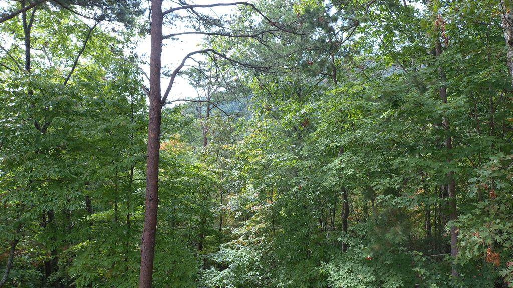 449 Hideaway Mountain Dr - Photo 1