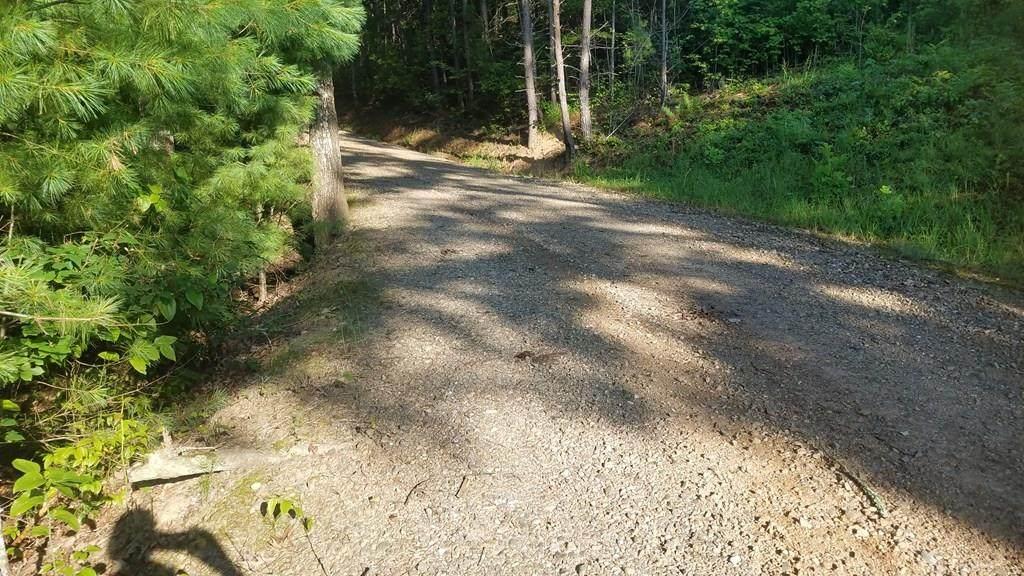 45 Mountain Lake Drive - Photo 1