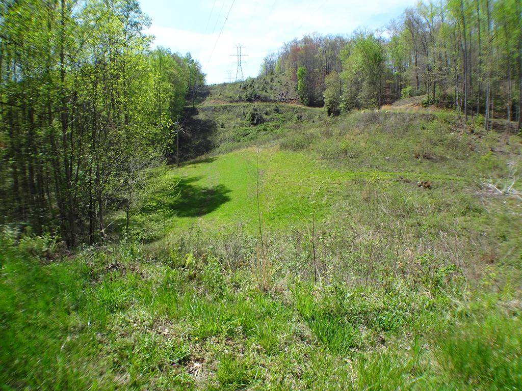 Lot10&11 Deweese Rd - Photo 1