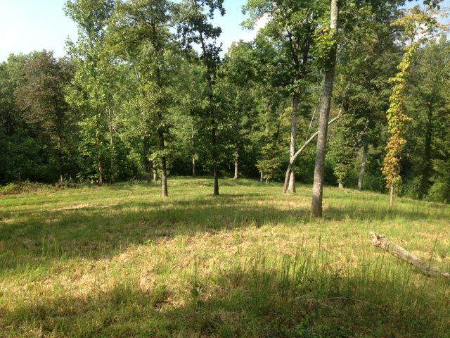 3 lots Haskett Drive - Photo 1