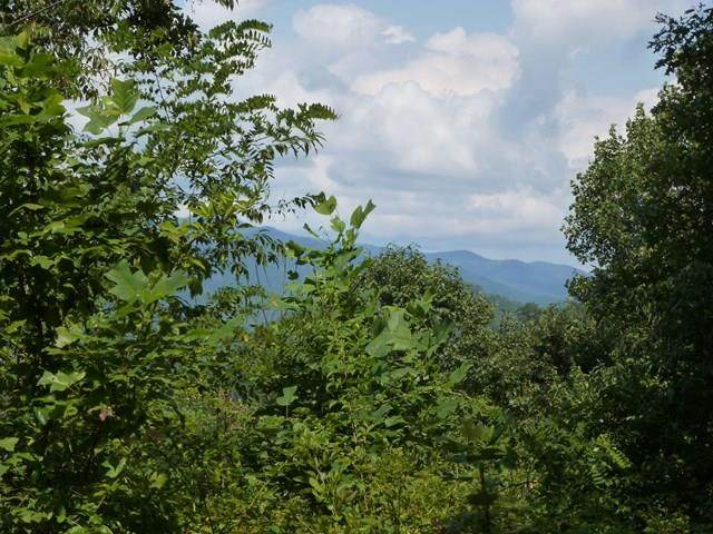 28A Trillium Heights, BRASSTOWN, NC 28902 (MLS #136419) :: Old Town Brokers
