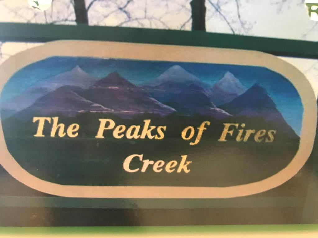 TBD Peaks Of Fires Creek - Photo 1