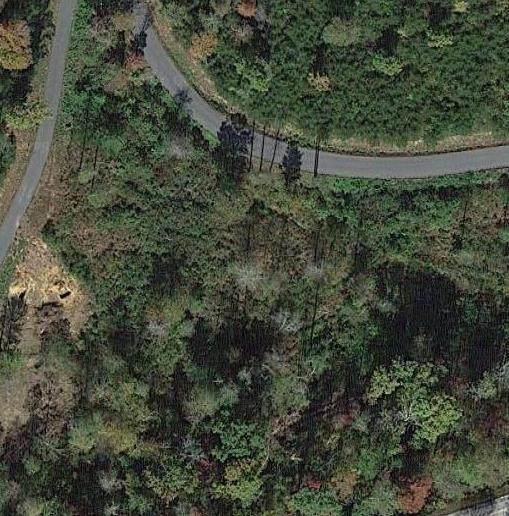 Lot 11 Highland Ridge Trail - Photo 1