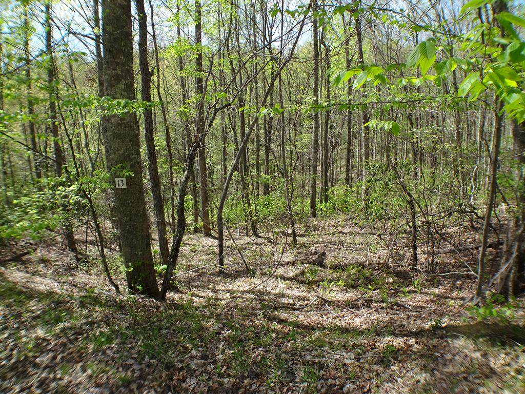 Lot13 Deweese Rd - Photo 1