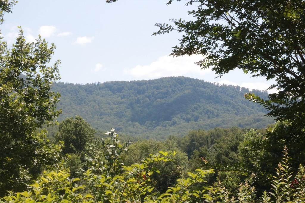3685 Candy Mountain Rd - Photo 1