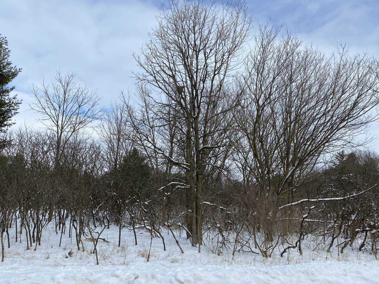 Lot #15 Concord Drive - Photo 1