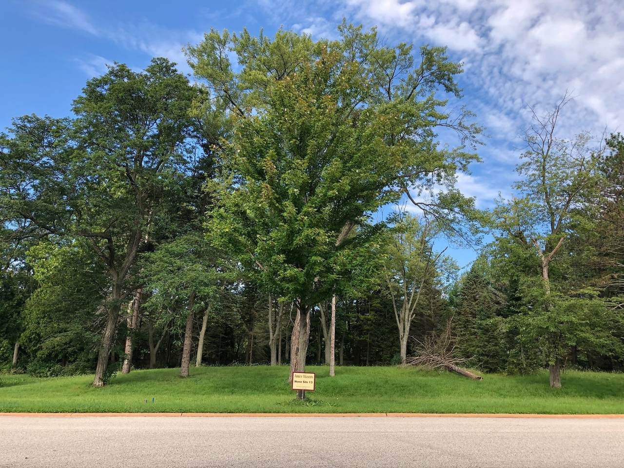 Lot 13 Abbey Woods Drive - Photo 1