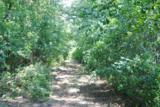 Lot 1 Deer Ridge Path - Photo 23