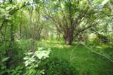 Lot 1 Deer Ridge Path - Photo 26