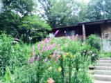 5465 Edgewood Drive - Photo 34