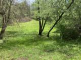 679 Plum Tree Road - Photo 17