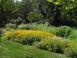 215 Wildflower Lane - Photo 22
