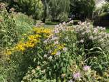 215 Wildflower Lane - Photo 23