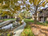 880 Sheldon Court - Photo 23