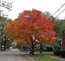 840 Sherwood Road - Photo 15