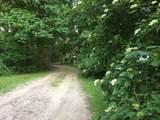 58 Willow Springs Lane - Photo 3
