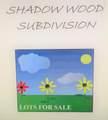 693 Shadow Wood Drive - Photo 2