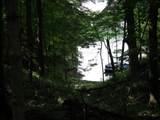 149-1/2 Lake Thunderbird Drive - Photo 1