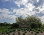 3801 Gardenia Drive - Photo 3