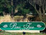 63 Pine Tree Lane - Photo 2