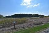 3N248 Campton Wood Drive - Photo 61