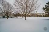 24152 Pear Tree Court - Photo 28