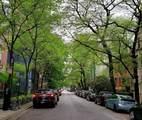 21 Chestnut Street - Photo 15