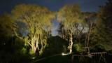 5242 Torrey Pine Circle - Photo 46