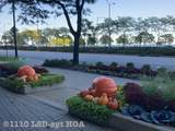 1110 Lake Shore Drive - Photo 13