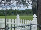1758 Glen Lake Road - Photo 41