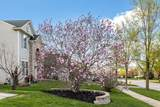 10 Lilac Court - Photo 29