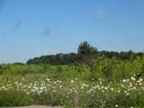 18007 Loretta Drive - Photo 8
