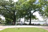 430 Lake Shore Boulevard - Photo 2