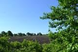 37W142 Hopps Road - Photo 7