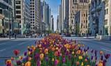 161 Chicago Avenue - Photo 37
