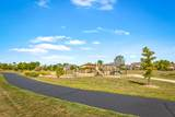 26228 Whispering Woods Circle - Photo 29