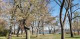 710 Blue Springs Drive - Photo 14