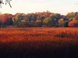 7 Harvest Glen Court - Photo 5