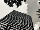 1960 Lincoln Park West - Photo 1