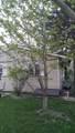 147 Austin Avenue - Photo 4
