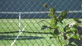 12 Birch Tree Court - Photo 43