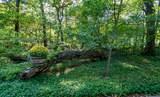 331 Arboretum Circle - Photo 41