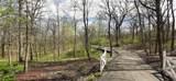 8310 Mason Hill Road - Photo 9