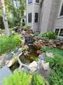 24850 Wildberry Bend - Photo 49