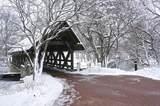3355 White Eagle Drive - Photo 67